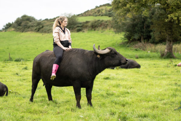 Dr. Cliona Murphy from on Macroom Buffalo